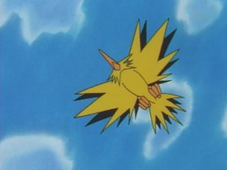 Zapdos flashes some Sunday strollers