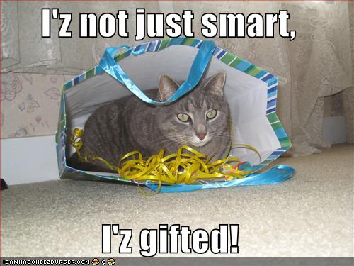 http://lolcatz.wikispaces.com/file/view/funny-pictures-smart-cat-gift-bag.jpg/35099741/funny-pictures-smart-cat-gift-bag.jpg
