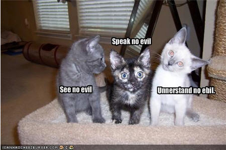http://whall.org/blog/files/lolcats-understand-no-evil.jpg