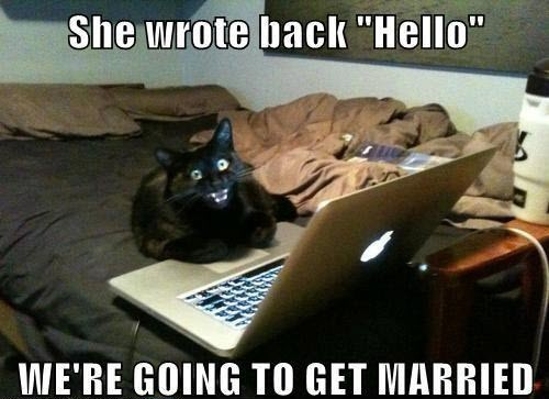http://www.stuffistumbledupon.com/wp-content/uploads/2012/10/cat-meme-lolcats-cats-kitty-kittys-kittens-kitten-laptop-cats-lapcat-overly-attached-Girlfriend-.jpg