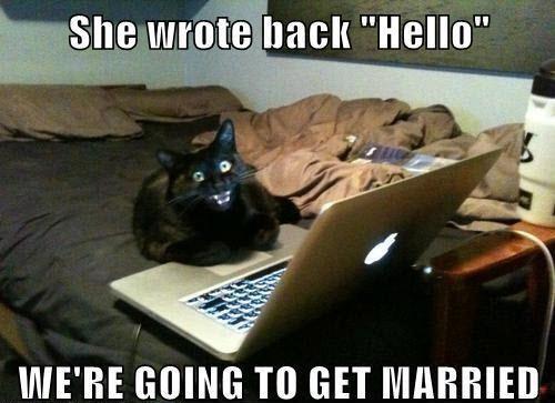 http://www.stuffistumbledupon.com/wp-content/uploads/2012/10/cat-meme-lolcats-cats-kitty-kittys-kittens-kitten-laptop-cats-lapcat-overly-attached-Girlfriend-.jpg