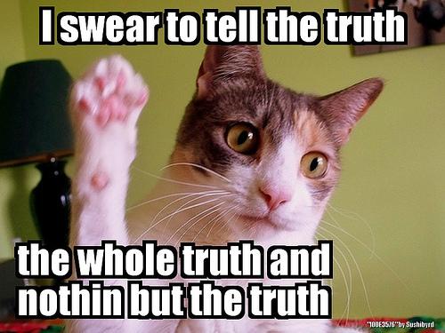 http://www.brocooli.com/wp-content/uploads/2012/02/lolcat-truth.jpg